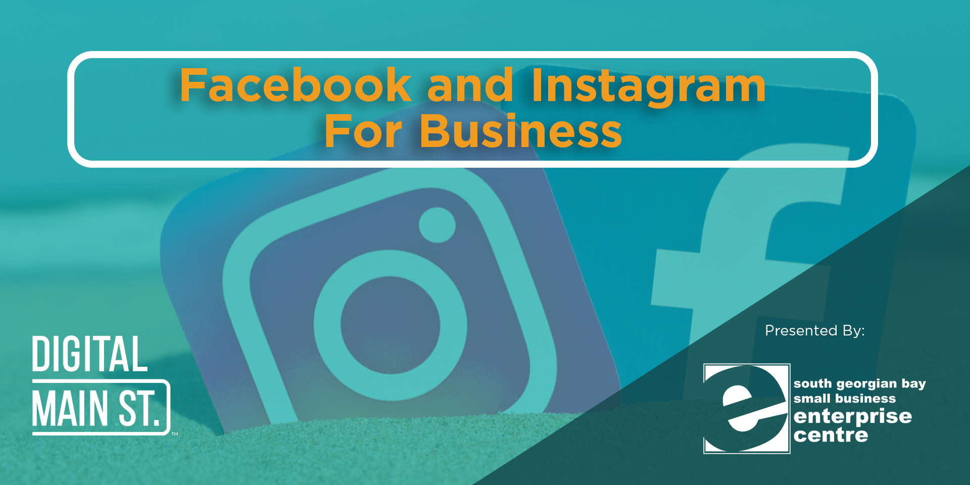 Access to webinar on Facebook & Instagram for Business